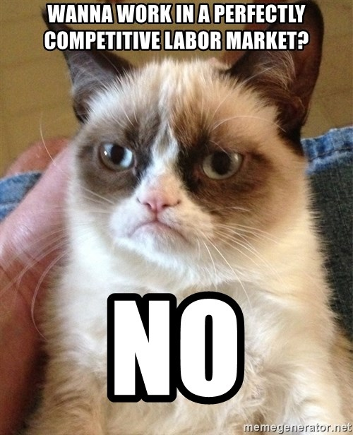 Grumpy Cat Face - wanna work in a perfectly competitive labor market? NO