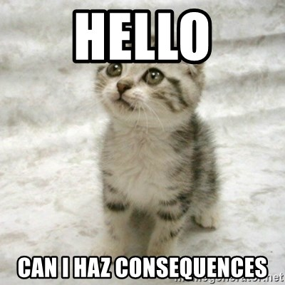Can haz cat - HELLO CAN I HAZ CONSEQUENCES