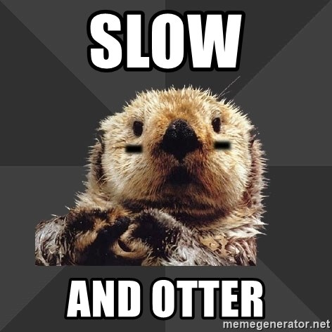 Roller Derby Otter - slow and otter