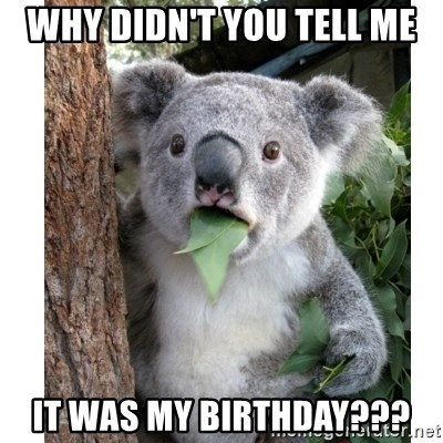 surprised koala - WHY DIDN'T YOU TELL ME it was my birthdAY???