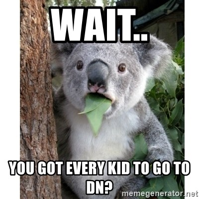 surprised koala - Wait.. you got every kid to go to dn?