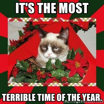 GRUMPY CAT ON CHRISTMAS - It's the most  terrible time of the year.