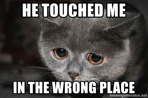 Sadcat - he touched me  in the wrong place