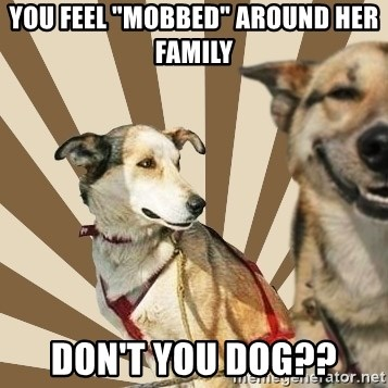 "Stoner dogs concerned friend - you feel ""mobbed"" around her family don't you dog??"