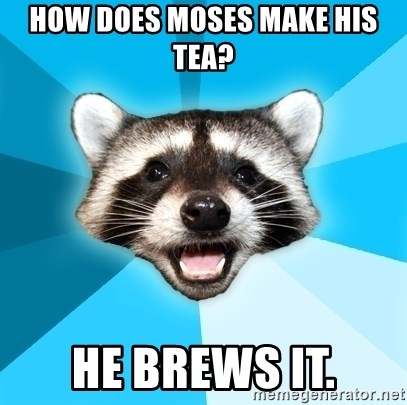 Lame Pun Coon - HOW DOES MOSES MAKE HIS TEA? HE BREWS IT.