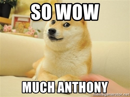 so doge - so wow much anthony