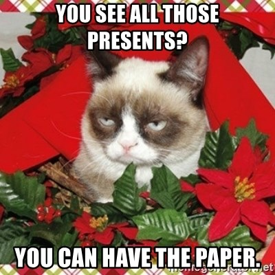 Grumpy Christmas Cat - you see all those presents? you can have the paper.