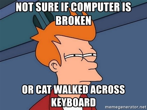 Futurama Fry - not sure if computer is broken or cat walked across keyboard