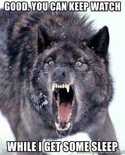 Angry Ass Wolf - good. you can keep watch while i get some sleep