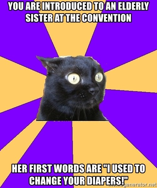 "Anxiety Cat - you are introduced to an elderly sister at the convention her first words are ""i used to change your diapers!"""