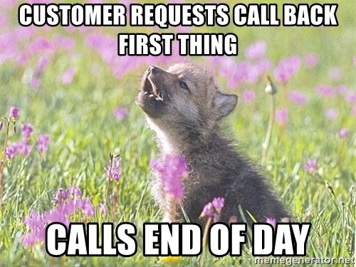 Baby Insanity Wolf - customer requests call back first thing calls end of day