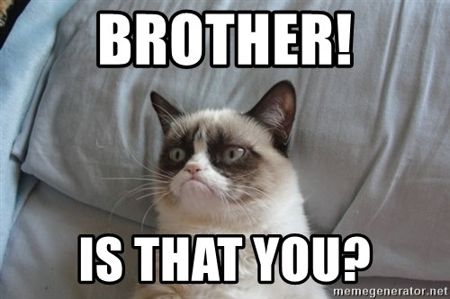 Grumpy cat good - Brother! Is that you?