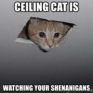 Ceiling cat - Ceiling cat is watching your Shenanigans