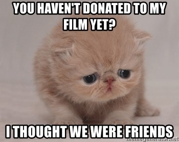 Super Sad Cat - You haven't donated to my film yet? I thought we were friends
