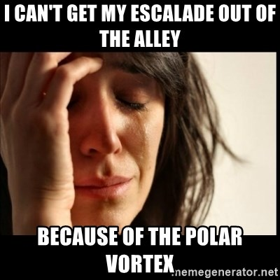 First World Problems - I can't get my escalade out of the alley because of the polar vortex