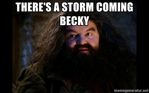 Yer A Wizard Harry Hagrid - There's a storm coming Becky