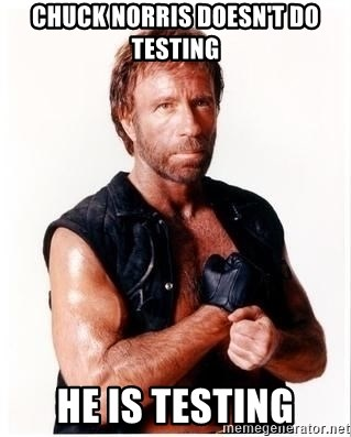 Chuck Norris Meme - CHUCK NORRIS DOESN'T DO TESTING HE IS TESTING