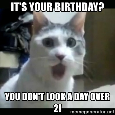 Surprised Cat - It's your birthday? You don't look a day over 2!