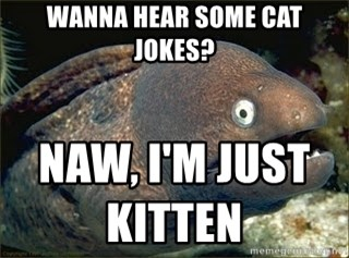 Bad Joke Eel v2.0 - wanna hear some cat jokes? naw, i'm just kitten