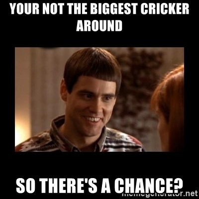 Lloyd-So you're saying there's a chance! - Your not the biggest cricker around so there's a chance?