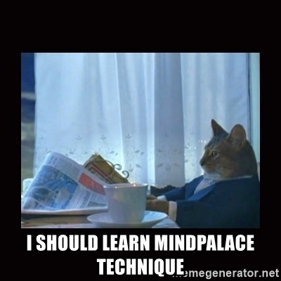 i should buy a boat cat -  I should learn mindpalace technique