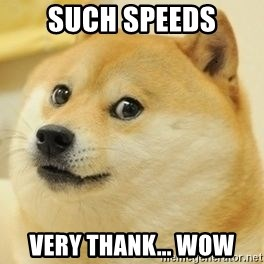 Real Doge - such speeds very thank... wow