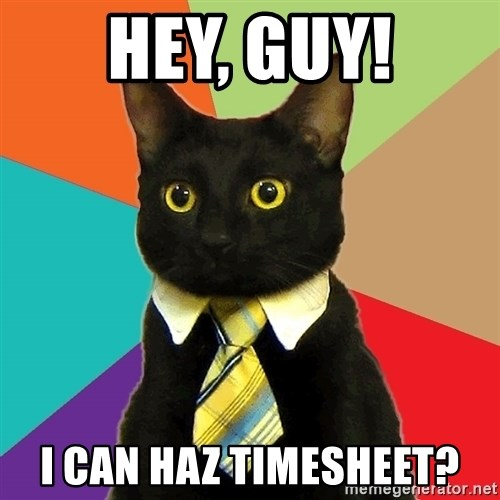 Business Cat - Hey, guy! I can haz timesheet?
