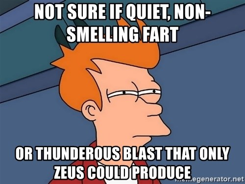Futurama Fry - Not sure if quiet, non-smelling fart Or thunderous blast that only Zeus could PRODUCE