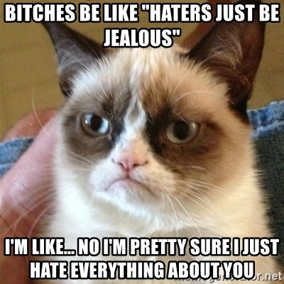"""Grumpy Cat  - Bitches be like """"haters just be jealous"""" I'm like... No I'm pretty sure I just hate everything about you"""