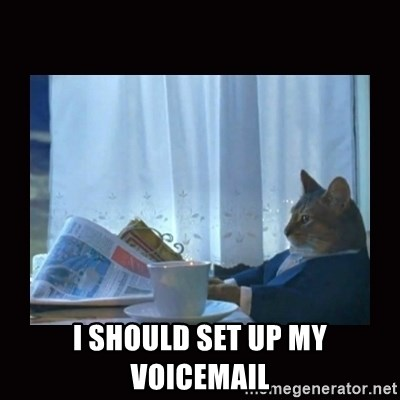 i should buy a boat cat -  I should set up my voicemail