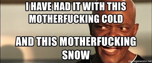 Snakes on a plane Samuel L Jackson - i have had it with this motherfucking cold and this motherfucking snow