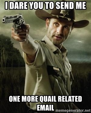 Walking Dead: Rick Grimes - I dare you to send me  one more Quail related email