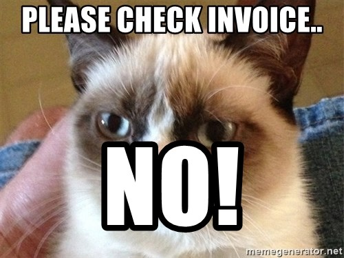 Angry Cat Meme - pLEASE CHECK INVOICE.. no!