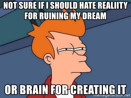 Futurama Fry - Not sure if I should hate realiity for ruining my dream  or brain for creating it