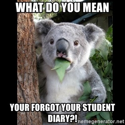 Koala can't believe it - what do you mean your forgot your student diary?!