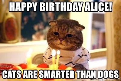 Birthday Cat - happy birthday alice! cats are smarter than dogs