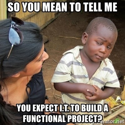 Skeptical 3rd World Kid - so you mean to tell me you expect I.T. to build a functional project?