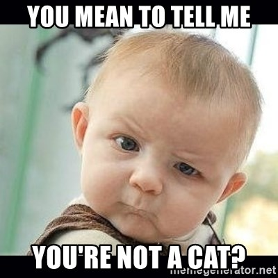 Skeptical Baby Whaa? - You mean to tell me You're not a cat?