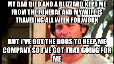 Bill Murray Caddyshack - my dad died and a blizzard kept me from the funeral and my wife is traveling all week for work but i've got the dogs to keep me company so i've got that going for me