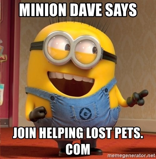 dave le minion - Minion Dave says  join Helping Lost Pets. com