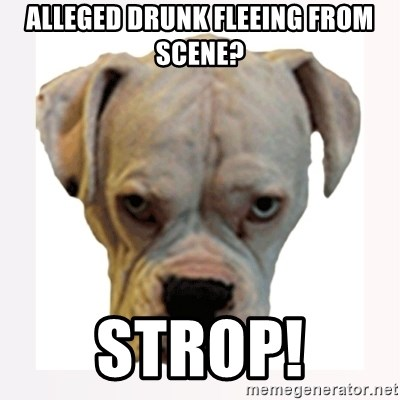 stahp guise - Alleged drunk fleeing from scene? Strop!