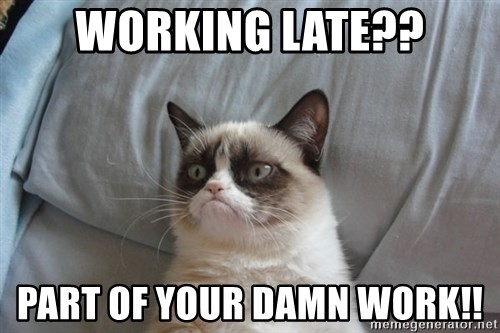 Grumpy cat good - Working late?? Part of your damn work!!