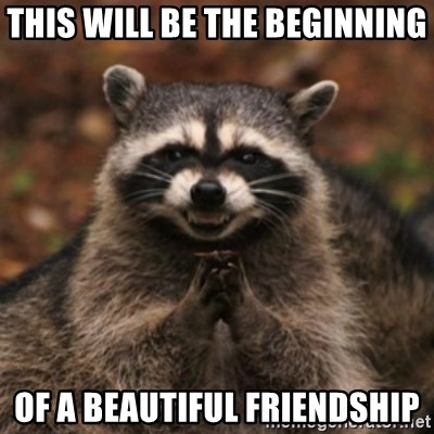 evil raccoon - this will be the beginning of a beautiful friendship