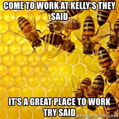 Honeybees - Come to work at Kelly's they said It's a great place to work try said