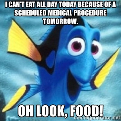 Dory - I can't eat all day today because of a scheduled medical procedure tomorrow. Oh look, FOOD!