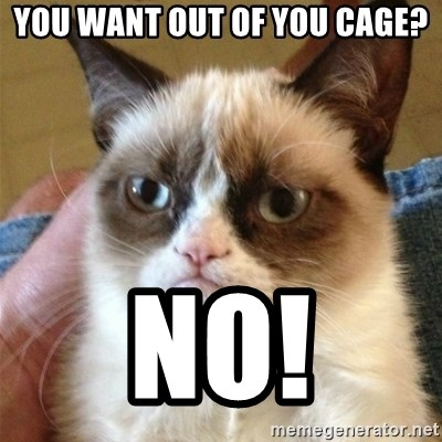 Grumpy Cat  - you want out of you cage? NO!
