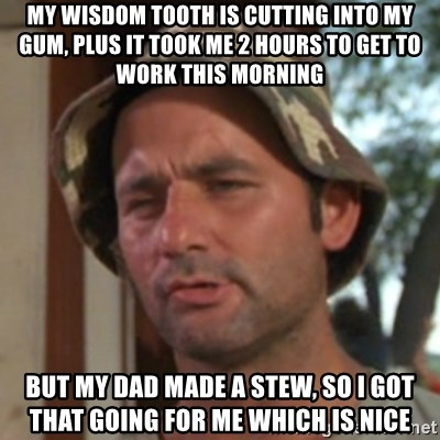 Carl Spackler - My wisdom tooth is cutting into my gum, plus it took me 2 hours to get to work this morning But my dad made a stew, so I got that going for me which is nice