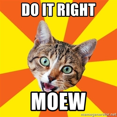 Bad Advice Cat - do it right moew