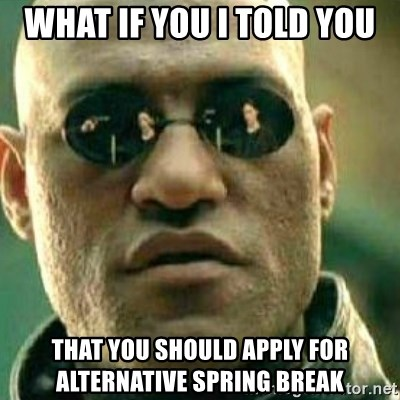 What If I Told You - What if you i told you that you should apply for alternative spring break