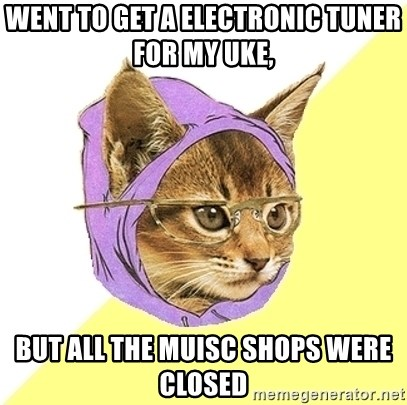 Hipster Kitty - went to get a electronic tuner for my uke,  but all the muisc shops were closed